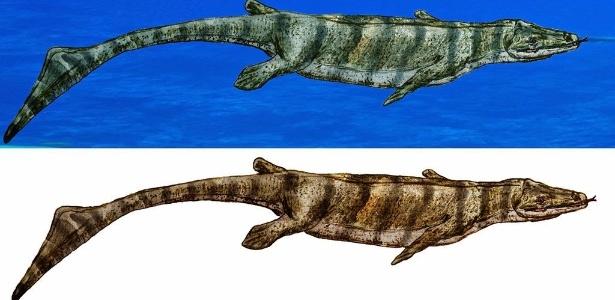 18fev2015-reproducao-artistica-do-eonatator-coellensis-um-mosassauro-parente-das-lagartixas-e-das-serpentes-cujo-fossil-foi-encontrado-em-rochas-com-80-milhoes-de-anos-1424296505852_615x300