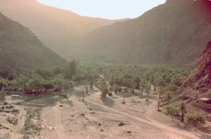 Oásis de Wadi Frian: acredita-se que esse seja o local do Elim Bíblico, hoje bem aguado e luxuriante de palmeiras e tamargureiras, que refrescaram a disposição os israelitas após sua decepção em Marah