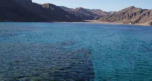 Bardawil é um lago de sal que está no Egito , na costa norte da Península do Sinai.  Os